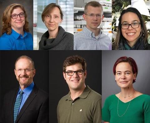 Image of Drs. Baserga, Bleichert, Koleske, Kabesche, Engelman, Schlieker & Gilbert